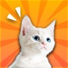 Call Cat-Communicate with your cat
