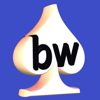 Bridgewebs - Bridgewebs アートワーク