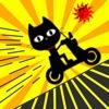 Crazy Driver Cat!