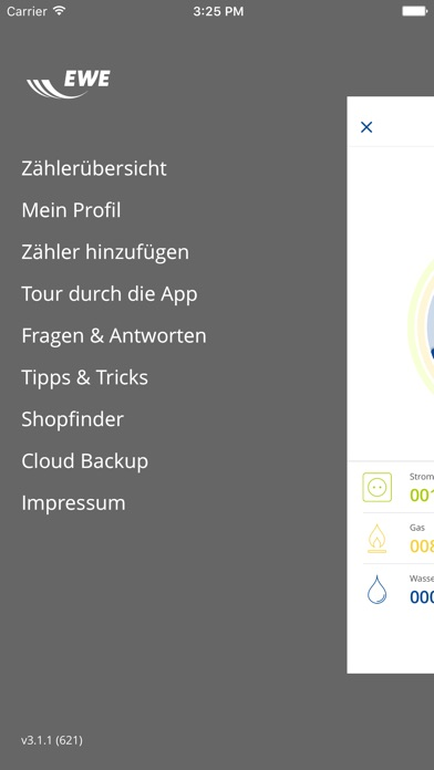 Screenshot von EWE Energiemanager 3.04