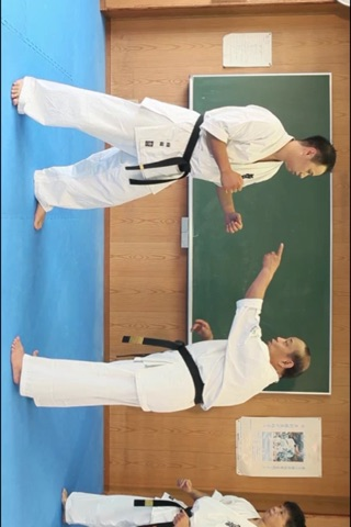 KYOKUSHIN KARATE TO WIN 2 screenshot 4