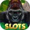 Gorilla Slot Machines – Free Wild Jackpot Lottery
