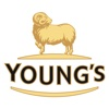 Young's - On Tap