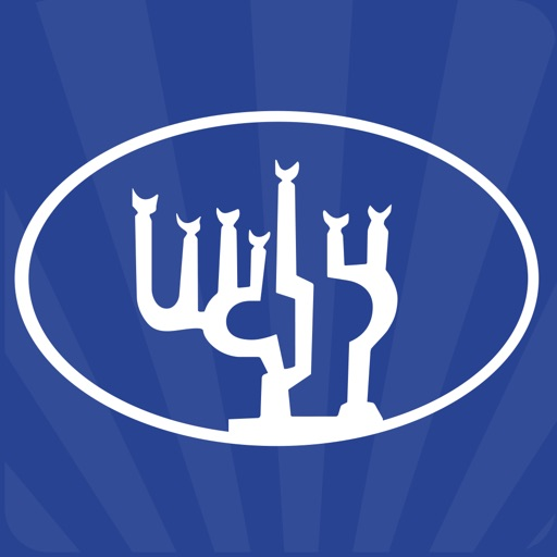 Congregation Beth Israel Judea
