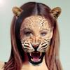 Animal cara editar selfie adesivos aplicativo foto