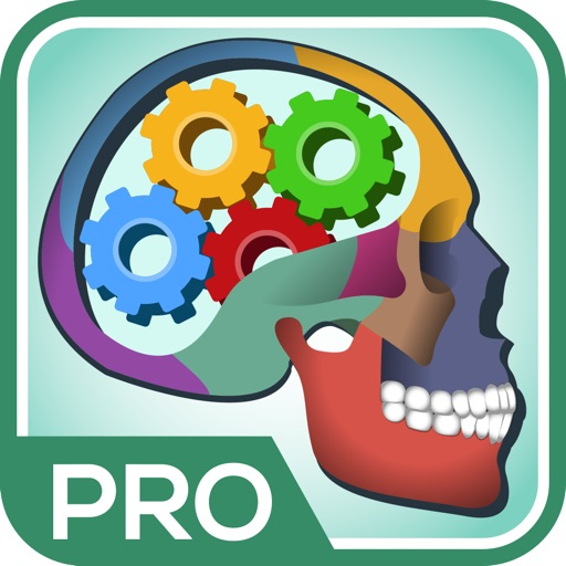 Anatomía Definitiva Del Concurso y Preguntas Pro - Por Med Brain ...