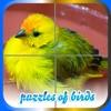 Puzzles of Birds Free