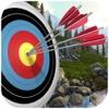 Royal Archery Master : 3D Crossbow Master camedia master 2 0