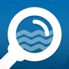 Pool Inspector - Australia Swimming Pool Inspection App insane overkill pool