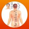 人体穴位图解按摩大全免费版HD 家庭自我保健中医经络养生与健康专家