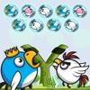 Bubble Birds Shooter