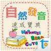 自然發音速成寶典, 正體中文版 Wiki