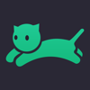VPN master cat - express web proxy