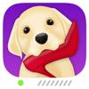 Martin Man - Pet Monitor: Dog and Puppy Camera  artwork