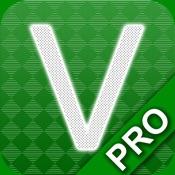 Verbs Pro: English