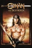 Richard Fleischer - Conan the Destroyer  artwork