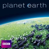 Planet Earth Diaries - Planet Earth Cover Art