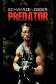 John McTiernan - Predator  artwork