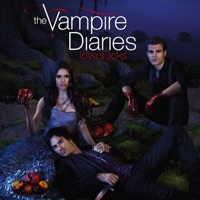 t l charger the vampire diaries saison 3 vf 22 pisodes. Black Bedroom Furniture Sets. Home Design Ideas