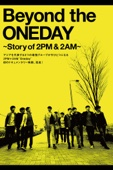 Beyond the ONEDAY ~Story of 2PM & 2AM~(字幕版)