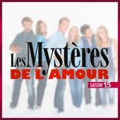 Les mystères de l'amour, Saison 15