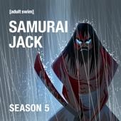 Samurai Jack, Season 5 - Samurai Jack Cover Art