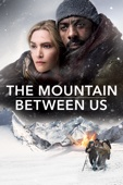 Hany Abu-Assad - The Mountain Between Us  artwork