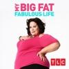 Big Fat Ambush - My Big Fat Fabulous Life