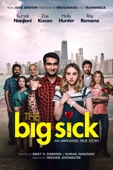 Michael Showalter - The Big Sick  artwork