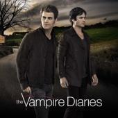 The Vampire Diaries, Season 8 - The Vampire Diaries Cover Art
