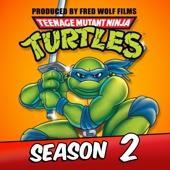 Teenage Mutant Ninja Turtles (Classic Series), Season 2 - Teenage Mutant Ninja Turtles (Classic Series) Cover Art