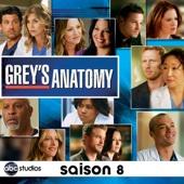 Grey's Anatomy, Saison 8