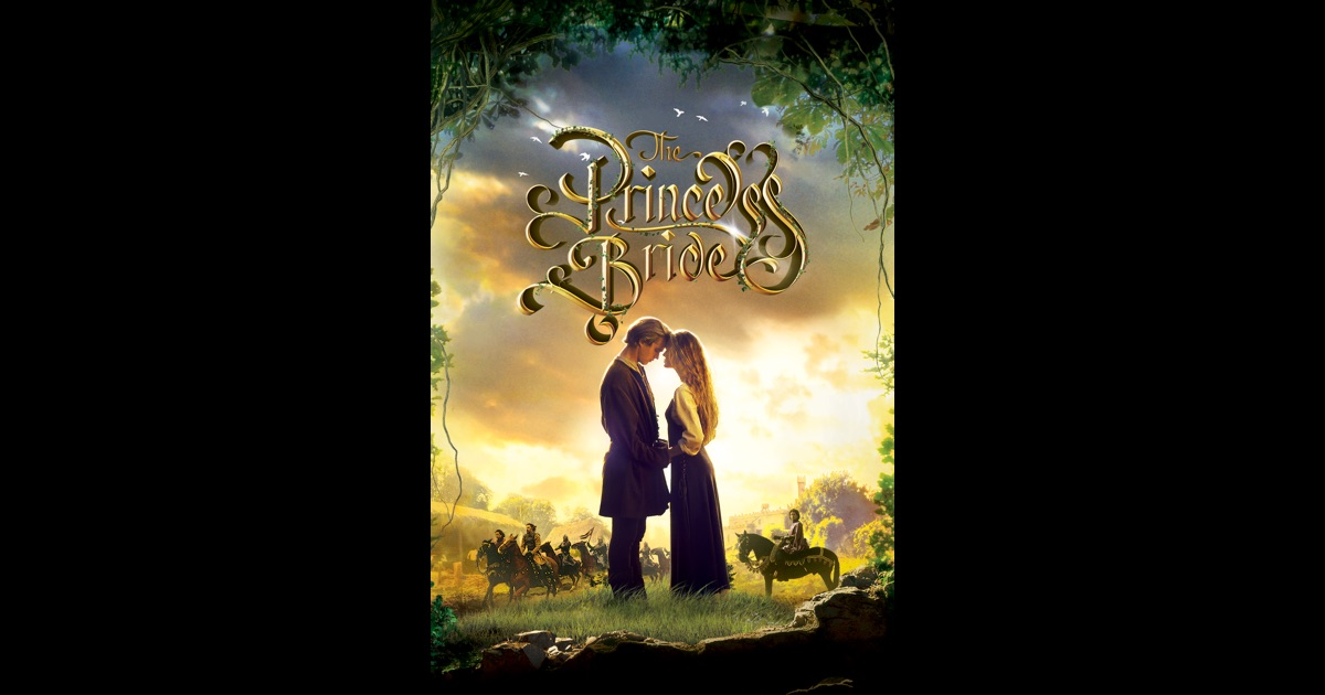 an analysis of the movie the princess bride directed by rob reiner