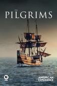 Ric Burns - American Experience: The Pilgrims  artwork