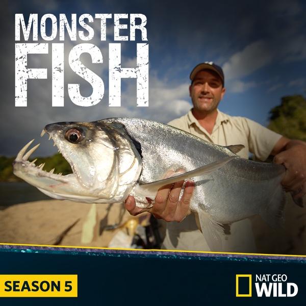 Watch Lucifer Season 4 Gomovies: Watch Monster Fish Episodes