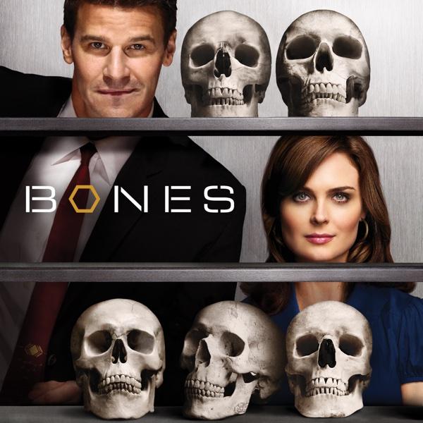 bones staffel guide