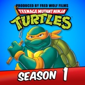 Teenage Mutant Ninja Turtles (Classic Series), Season 1 - Teenage Mutant Ninja Turtles (Classic Series) Cover Art