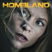 Homeland, Season 5 - Homeland Cover Art