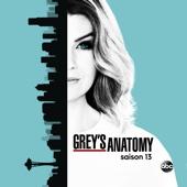 Grey's Anatomy, Saison 13 (VOST)
