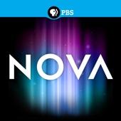 NOVA, Vol. 16 - NOVA Cover Art