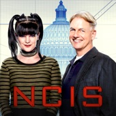 NCIS - NCIS, Season 14  artwork