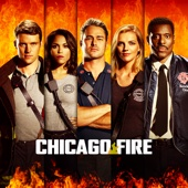 Chicago Fire, Season 5 (subtitled)