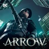 Arrow - Disbanded  artwork