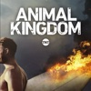 Animal Kingdom - Cry Havoc artwork