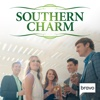 Southern Charm - Sari, Not Sari...  artwork